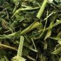 無農藥栽培茶-蕁麻葉-Nettle (26g)