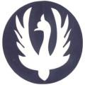 身體-刺青模板-鴿子